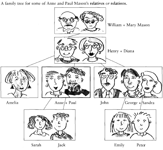 Vocabulary The family tree - Vocabulario el arbol familiar
