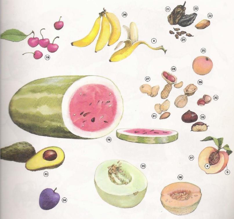 Fruit in English 2